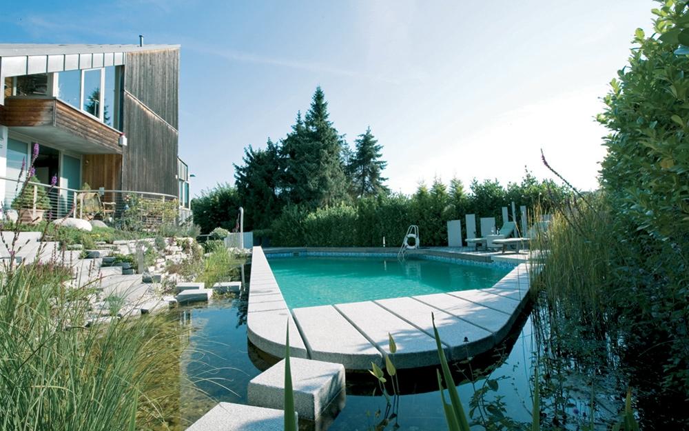 Gartenteich schwimmteich und pool gartengestaltung - Kunstfelsen pool ...